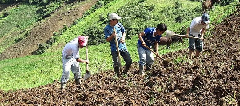 Agricultura limpia