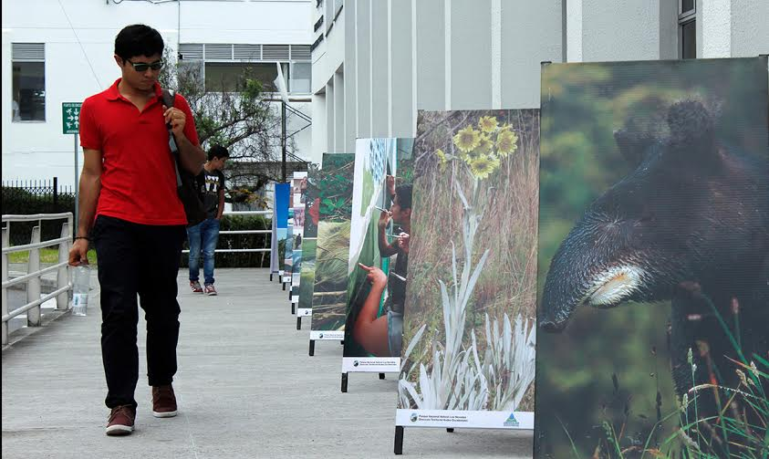 Universidad nacional exposicion manizales