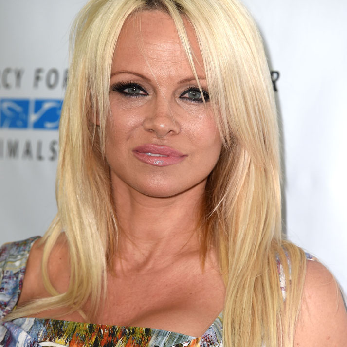 CULVER CITY, CA - AUGUST 29:  Pamela Anderson arrives at the Mercy For Animals Presents The Hidden Heroes Gala at Unici Casa on August 29, 2015 in Culver City, California.  (Photo by Steve Granitz/WireImage)