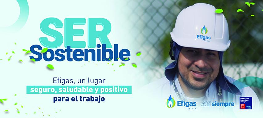Ser sostenible. Banner Efigas.