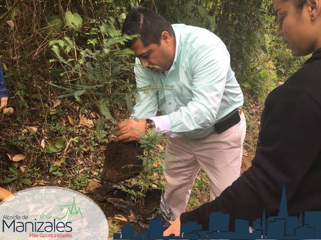 alcalde sembrando arboles