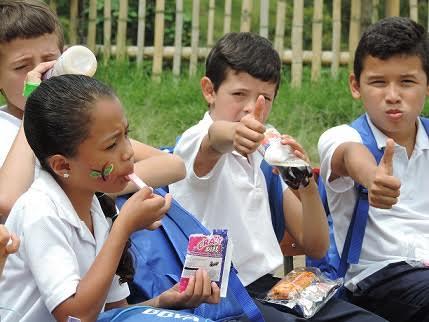 Alimentacion escolar caldas