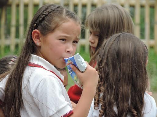 alimentación escolar caldas
