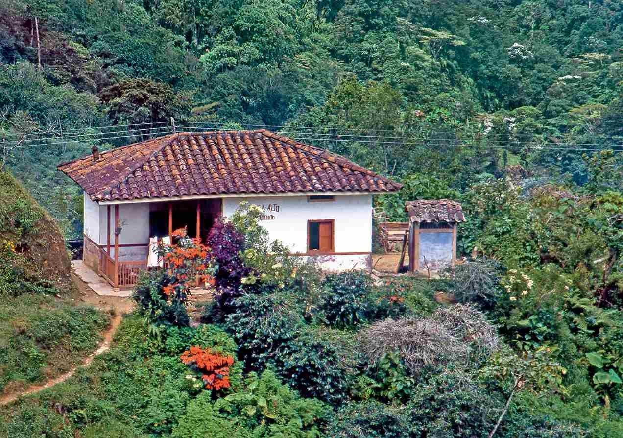 Mejoramientos de vivienda rural