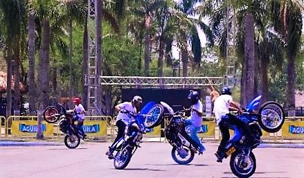 stunt festival