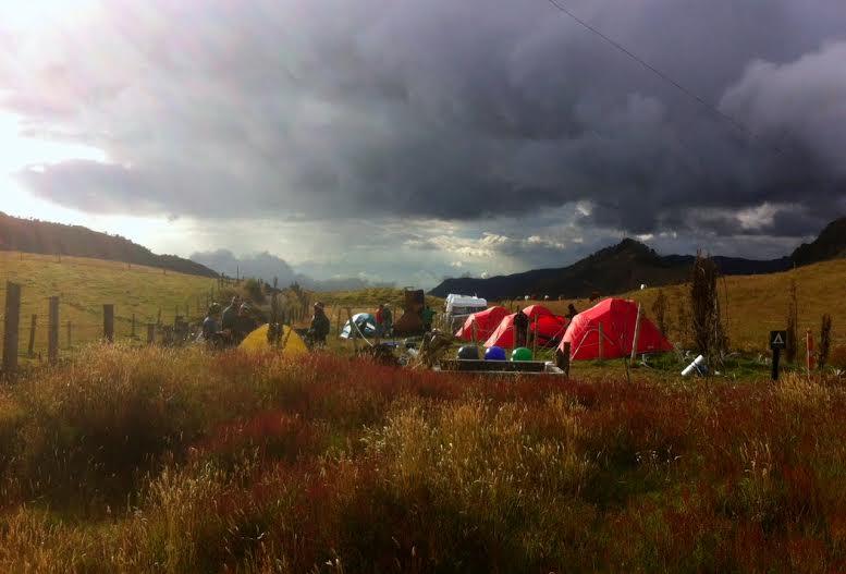aviturismo-parque-natural-de-los-nevados