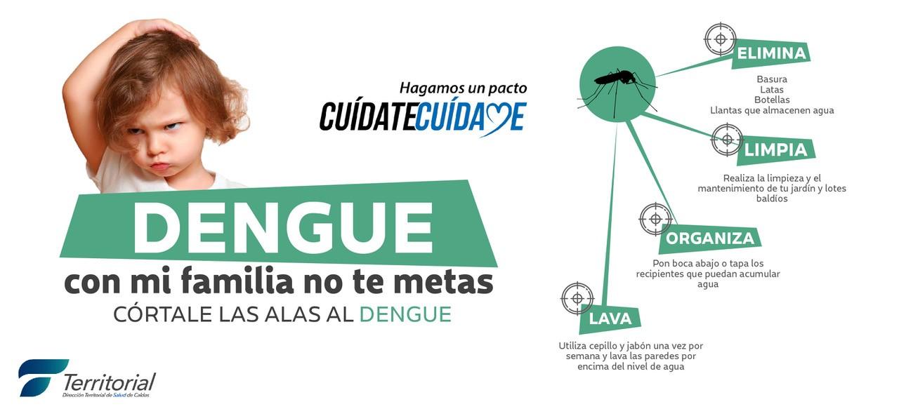 Dengue. Dirección Territorial de Salud. Banner.