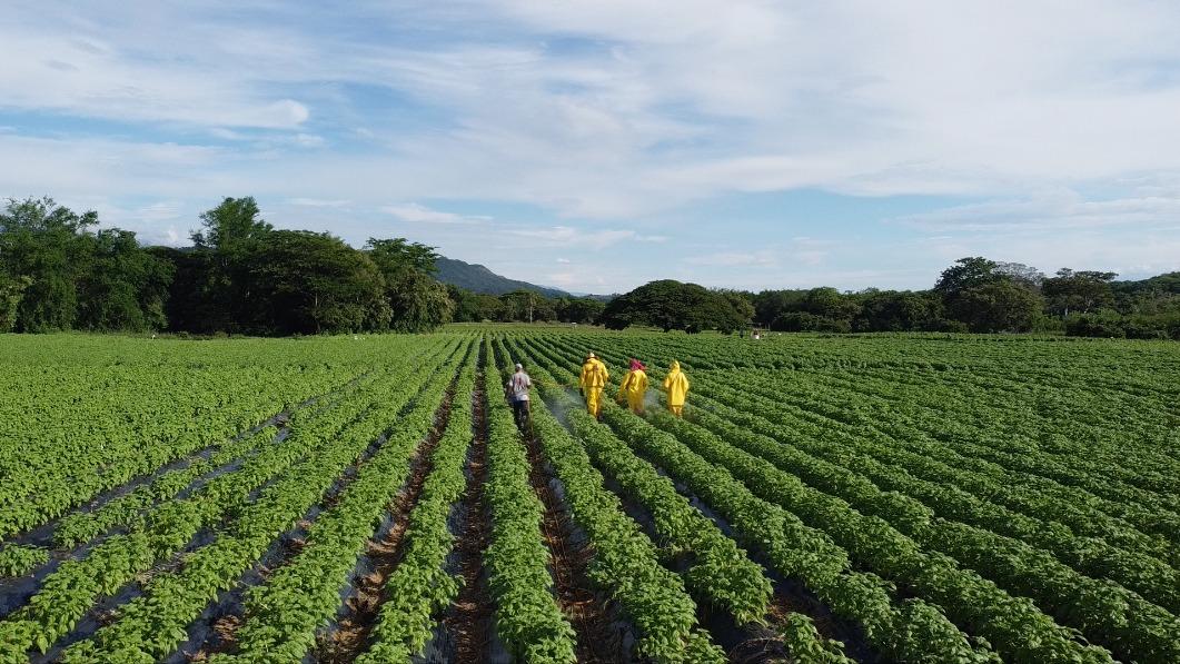 """El proyecto Girardot-Honda-Puerto Salgar trajo progreso para el Tolima,  Cundinamarca y Caldas"""", Hernando Bernal, microempresario - Eje21"""