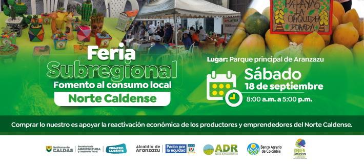 Feria Subregional banner